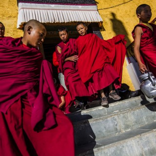 Monks-ladakh-320x320